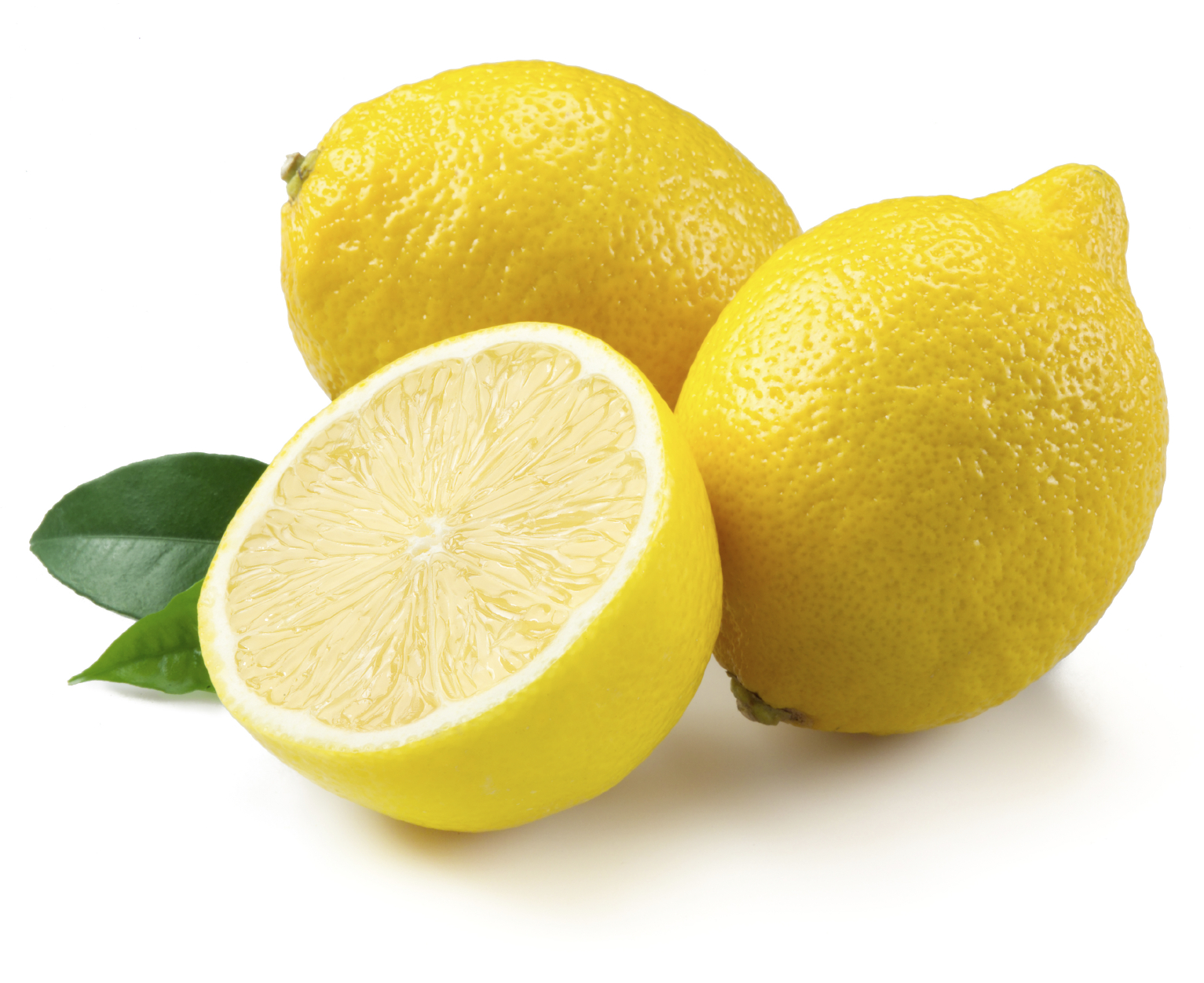 Printable Lemon Pictures